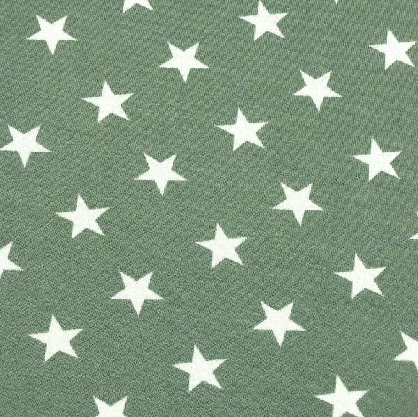 French-Terry Sterne grau-grün