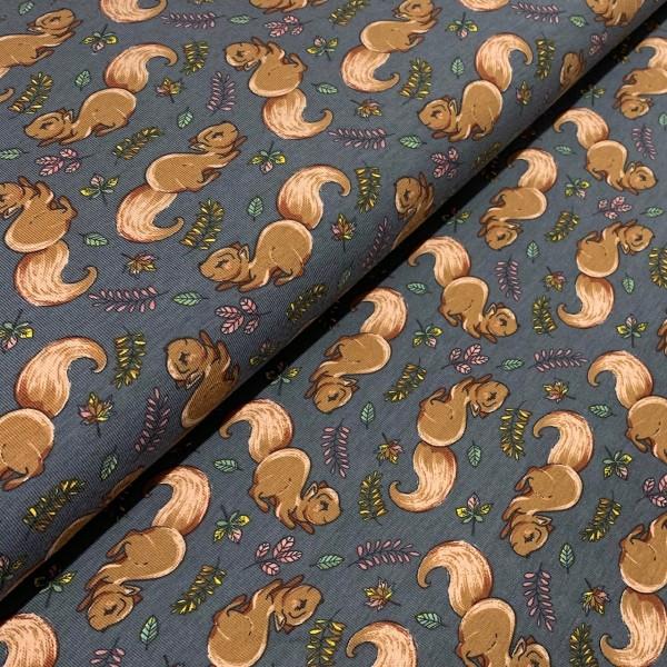 Jersey Eichhörnchen dunkelgrau