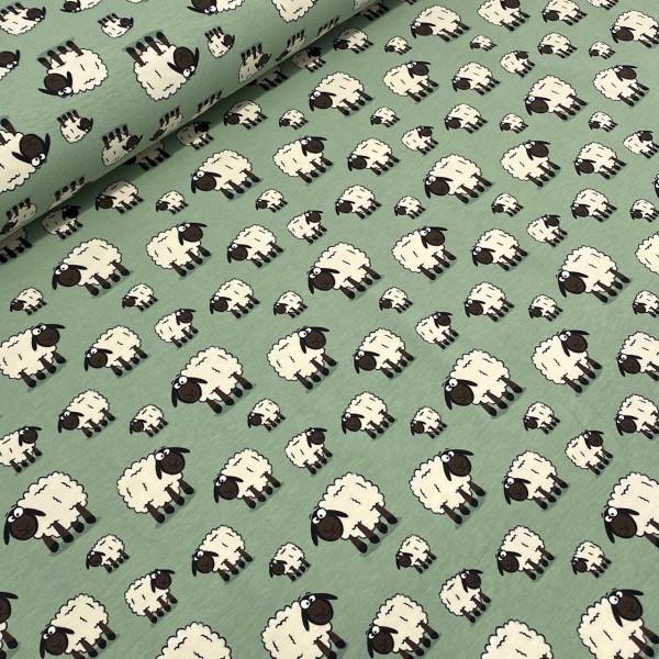 Jersey Schafe grün